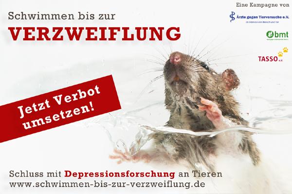 http://www.schwimmen-bis-zur-verzweiflung.de/img/material/fb.jpg